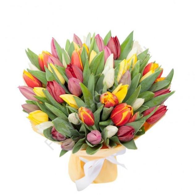 49 тюльпанов микс