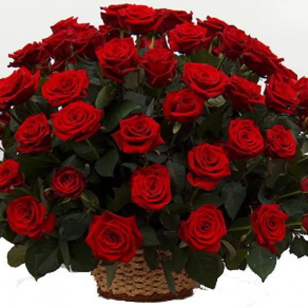 51 ароматная роза в корзине